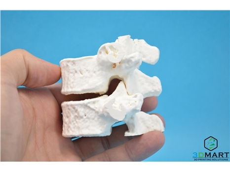 Ultimaker PLA-3D列印線材-白色(White)-Bone