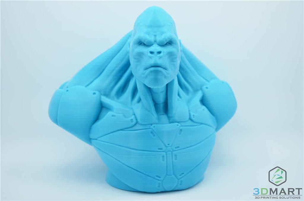 Ultimaker 3D列印機 Esun PLA+材料 Poachers Cortex 正面